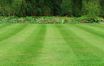professional Romford grass cutting services