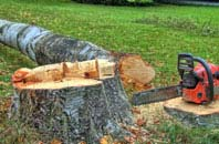 free Romford tree felling quotes